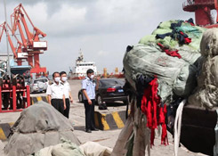 解密!为什么有的海关查获货物要销毁?